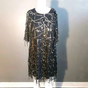 Zara Fringed Sequined Party Dress